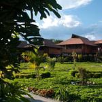 rainforest lodges in Ecuador