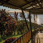 amazon lodge in Ecuador